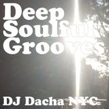 DJ Dacha - Deep Soulful Grooves - DL131