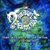 Dragon Dreaming Festival 2014 - Closing DJ Set