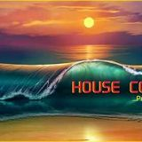 HOUSE COLORS 19-2016