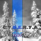 C.Y.B.E.R.Y.A - Winter Cold