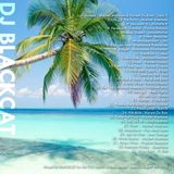 DJ Blackcat - Black Sweat 3 Pt 2. - Soca 2013