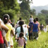 Columna Migración: La ruta de la migración en músicas latinoamericanas