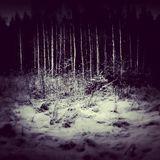 A Winter's Adventure