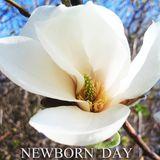 Newborn Day