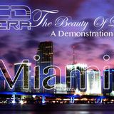 Ted Rivera - The Beauty Of Life 14 - Miami - A Demonstration Of Love Feb 2012