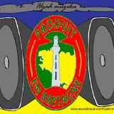 THE BZH DUB FOUNDATION