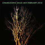 Milgi Mix Feb 2015