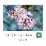 FDVM - Supernatural #30