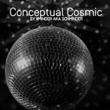 Conceptual Cosmic