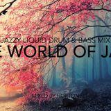 """""""The World Of Jazz"""" ~ Jazzy Liquid Drum & Bass Mix"""