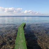 MARCOS MILLER SATRINXA SALINAS BEACH 2