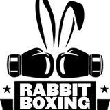 Rabbit Boxing - Ready or Not! - Kyle Horton