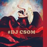 LATIN FEVER (Compiled By DJ Csom)