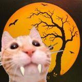 TAKA Halloween