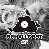 Schallobst #15 - The Spirit Of Andreas Gehm II (2018-06-17 @ 674.fm)