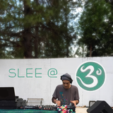 Slee @ 3 Degrees 2015