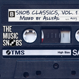 In The Mix 013 - Snob Classics, Vol. 1 (Mixed by AllyAl)