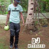 Dj Boom Introducing Dj WeedSeed  On KDLR KEEP DI LINK  RADIO  Interview With Cyborg