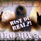 Bist du real?! Mix 2018 (mixed by Dj Peddy)