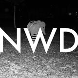 Sternek // NWD MIX
