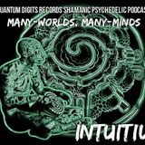 Quantum-D Podcast #009 - Intuitiu - Many-worlds, Many-minds