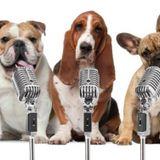 SPACE DOGS RADiO - #miXtape  060 - tHRiCE