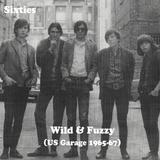 Sixties - Wild & Fuzzy (US Garage Punk 1965-67)