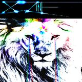 LION MIX - (Get Your Groove On Edition)  August '14