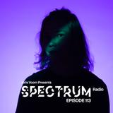 Joris Voorn Presents: Spectrum Radio 113