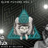 Slow Future Vol. I