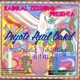 Radikal Zessions 070514 X RZR Peyote Azul Band