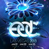 Afrojack - Live @ Electric Daisy Carnival EDC Las Vegas (USA) 2013.06.21.