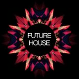 Best of Future House