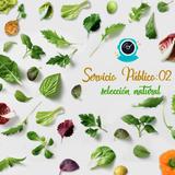 Servicio Público 02 - Selección Natural 2016
