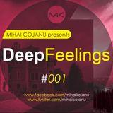 Mihai Cojanu - Episode #033 - Deep Feelings 1