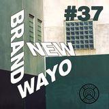 Brand New Wayo Vol. 37