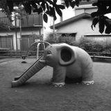 Rodolphe Coster - Elephant Dj set / Le Pacifique - Belgium Collection 13