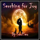 Searchin For Joy