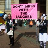 Anti Badger Cull March Birmingham, February 2014 - Part 1