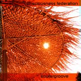 Consciousness Federation-SoularGroove