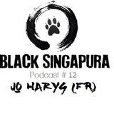 Black Singapura Podcast#12 Jo Harys (FR)
