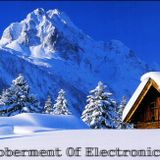 Goberment Of Electronic Music