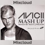 Avicii The Mash Up!
