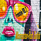Freestyle Megamix Vol 2 - Mixmaster Rob Soltis