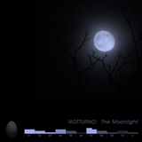 #001 NOTTURNO Part 1: The Moonlight (1993)