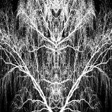 Kaputzki - Welcome to the Forestry Part 1 ( 148 - 150 BPM Dark Forest DJ - Set )