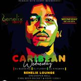CARRIBEAN REGGAE MIX  EVERY WEDNESDAY AT BENELIX LOUNGE -VIBE SOUNDS ENT -
