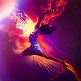 Mai 2014 #16 Electro/House Mix
