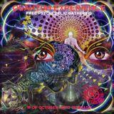 Pálmester - Quantum Experience Party Tribal Trance Set 2019-10-19