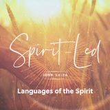 Spirit Led: The Spirit and The Law